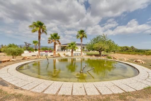 Natural estanque en el jardín
