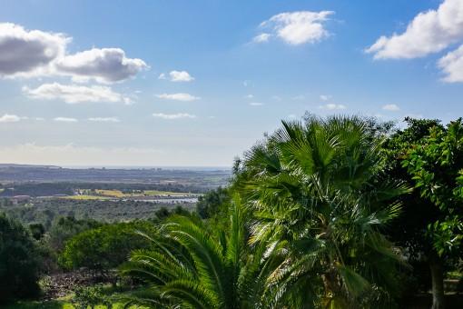 Vistas lejanas a la bahía de Palma