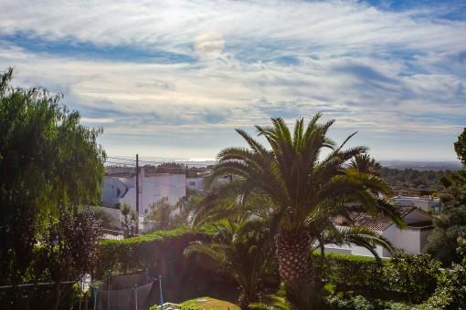 Vistas a la bahía de Palma