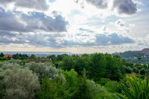 Fantásticas vistas a la bahía de Palma