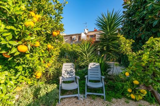 Jardín idílico con arboles frutales