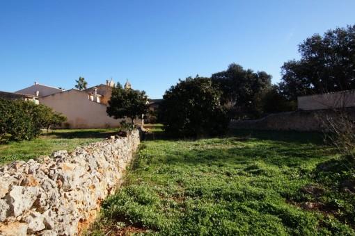Terreno bonito en una ubicación tanquila en el centro de Pina