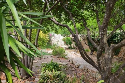 Vista alternativa al jardín