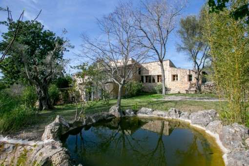 Jardín hermoso con estanque de jardín