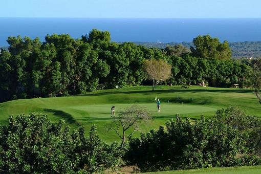 Campo de golf cerca del chalet