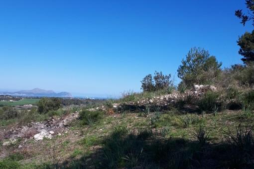 Vistas panorámicas sobre el paisaje de Santa Margalida