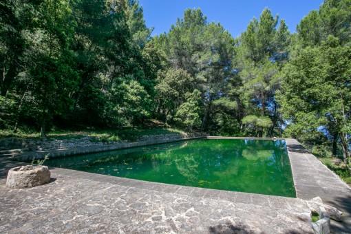 Otra prosibilidad para una piscina
