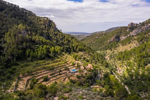 Finca tranquila con casa de invitados y su propia montaña en Alaró