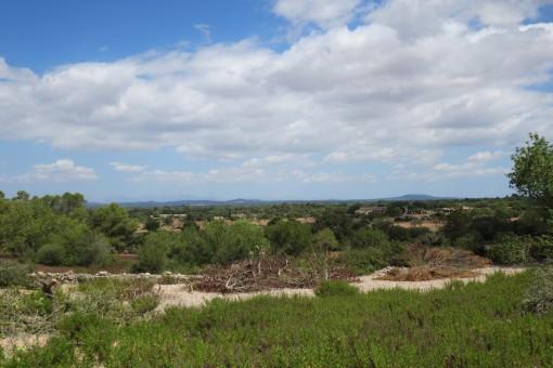 Magnífica propiedad con proyecto cerca de Santanyi