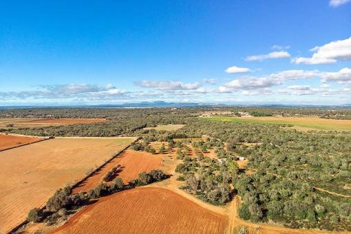Impresionante terreno con vistas panorámicas cerca de Santanyí