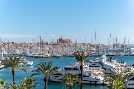 Magníficas vistas sobre el puerto