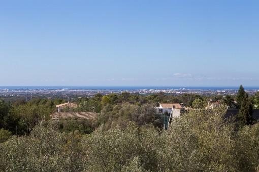 Fantásticas vistas panorámicas sobre la bahía de Palma