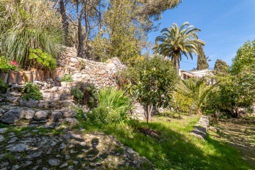 Jardín mediterránea con varias plantas