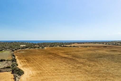 Magnífico terreno con vistas al mar y proyecto básico para construir una finca única en S'Almunia