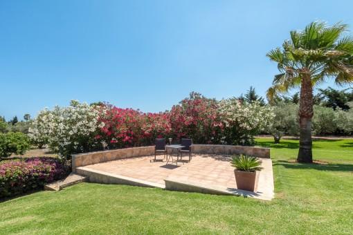 Terraza idílica en el jardín